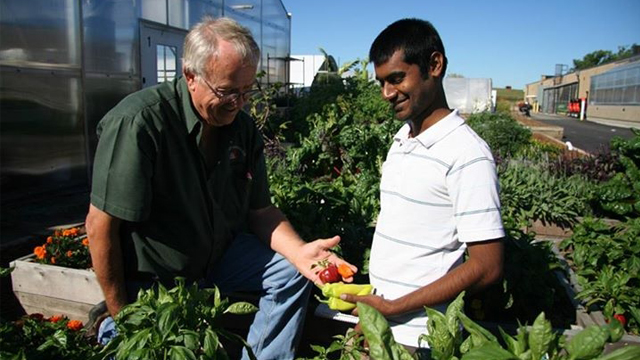 Older man handing younger man some harvested produce