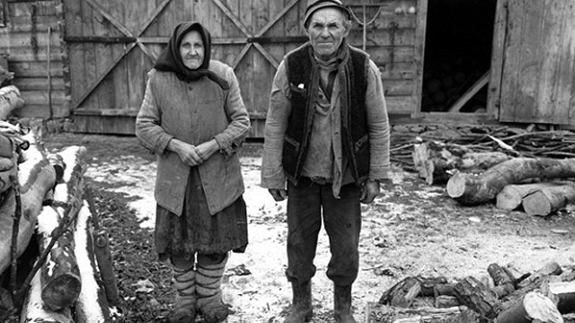 Man and woman standing amid wood